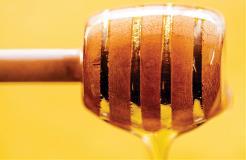 Fresh Thinking: Honey