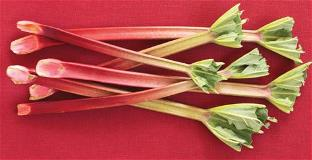 Baking with Rhubarb