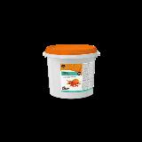 NOUVEAUTE : DAWN Fourrage Pumpkin Spice (citrouille & épices)
