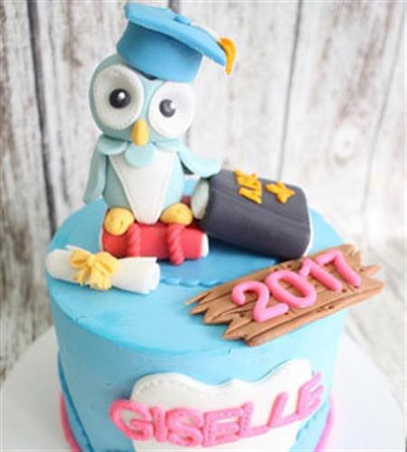 Graduation cake with fondant owl