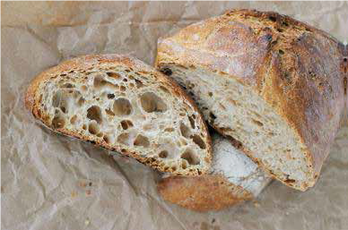 Sourdough Bread – homecooking.about.com